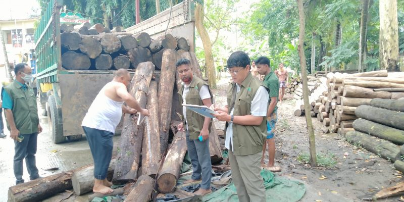 comilla wood (2)